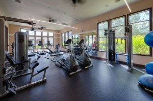 Apartments For Rent in Katy, TX - Fitness Center (4)